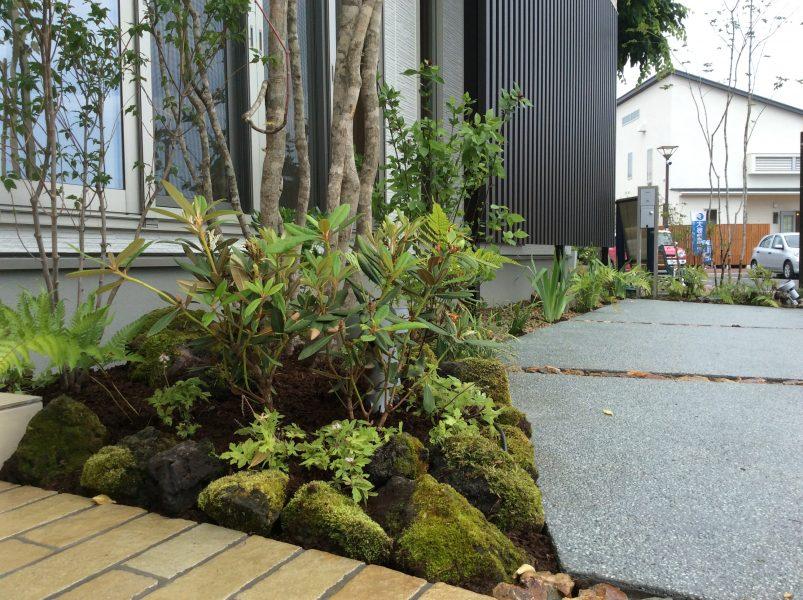 創作の小庭/坪庭|庭園工事|埼玉県熊谷市