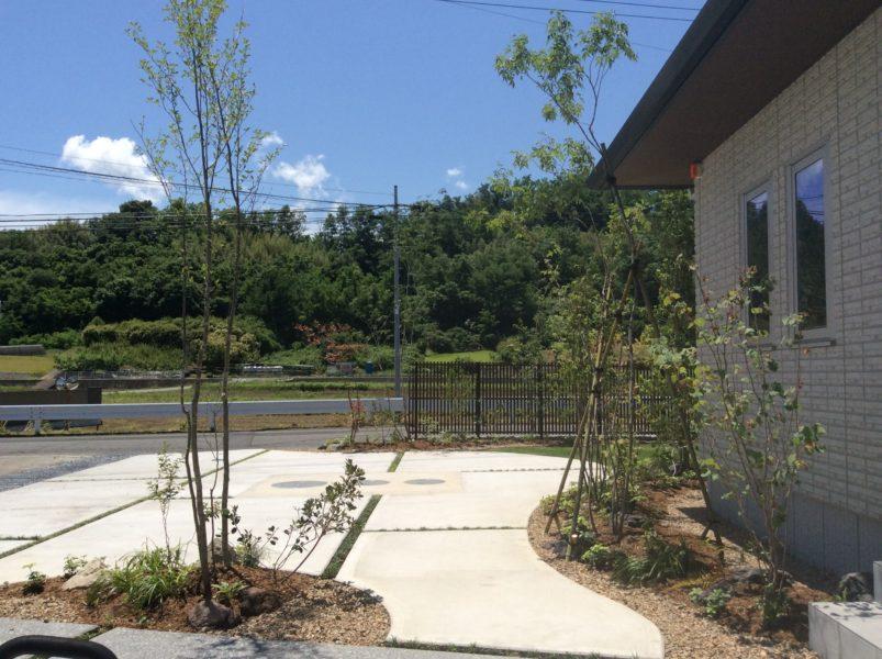 雑木と縦格子フェンスのお庭3