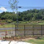 雑木と縦格子フェンスのお庭4