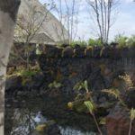 出展庭園(信州の庭)1