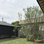 自然と調和する雑木の庭4