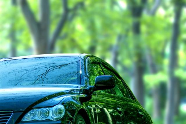 森林のなかに停められた車