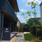 生きた樹木が美しい人工芝のナチュラルローメンテナンスガーデン