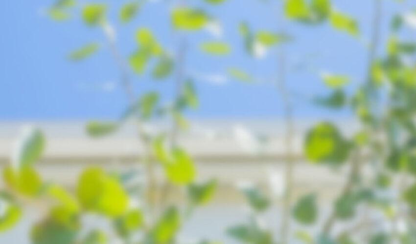 おしゃれな玄関アプローチにおすすめの素材3選、群馬県高崎市エクステリアのグロウスガーデン